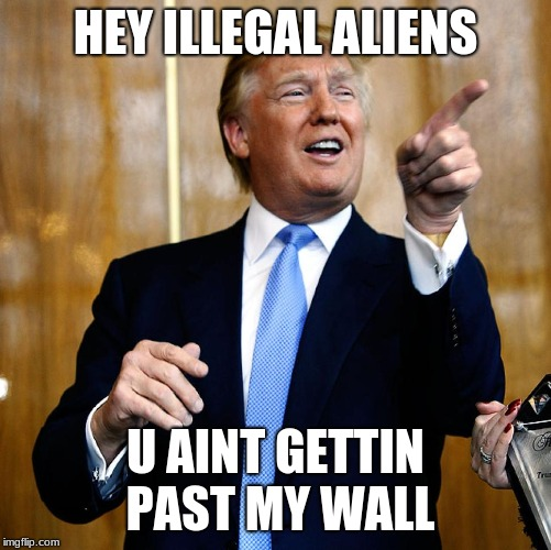 Donal Trump Birthday | HEY ILLEGAL ALIENS U AINT GETTIN PAST MY WALL | image tagged in donal trump birthday | made w/ Imgflip meme maker