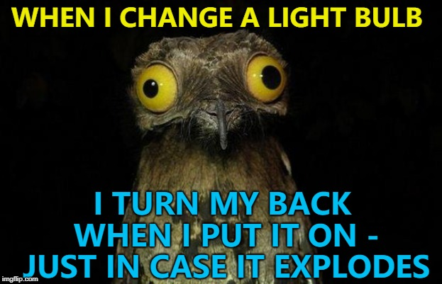 It only takes one memer to change a light bulb... :) | WHEN I CHANGE A LIGHT BULB I TURN MY BACK WHEN I PUT IT ON - JUST IN CASE IT EXPLODES | image tagged in memes,weird stuff i do potoo,light bulbs,explosion,you never know | made w/ Imgflip meme maker