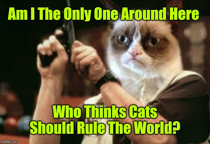 We'll Be In Some Serious Trouble If That Ever Happens! 44colt's Meme Template Challenge March 18-24 (A 44colt event)  | Am I The Only One Around Here Who Thinks Cats Should Rule The World? | image tagged in grumpy cat,memes,am i the only one around here,cats rule,44colt,44colt's meme challenge | made w/ Imgflip meme maker