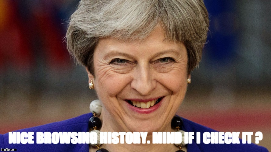 #TreasonMay | NICE BROWSING HISTORY. MIND IF I CHECK IT ? | image tagged in theresa may,the great awakening | made w/ Imgflip meme maker