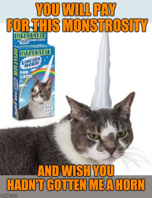 Unikitty is not impressed with her birthday gift  | YOU WILL PAY FOR THIS MONSTROSITY AND WISH YOU HADN'T GOTTEN ME A HORN | image tagged in memes,cats,one does not simply,brock how dare you,death note,grumpy cat does not believe | made w/ Imgflip meme maker