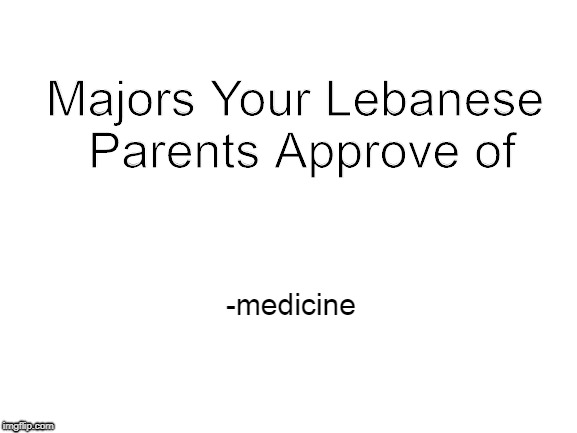 Blank White Template |  Majors Your Lebanese Parents Approve of; -medicine | image tagged in blank white template | made w/ Imgflip meme maker