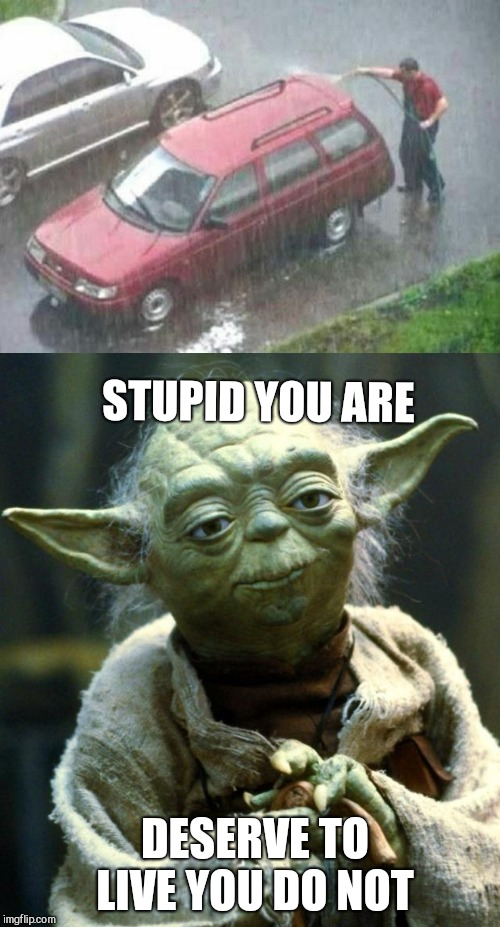STUPID YOU ARE DESERVE TO LIVE YOU DO NOT | image tagged in memes,star wars yoda,stupid people | made w/ Imgflip meme maker