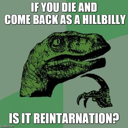 Philosoraptor |  IF YOU DIE AND COME BACK AS A HILLBILLY; IS IT REINTARNATION? | image tagged in memes,philosoraptor,rednecks,hillbilly,bad pun,reincarnation | made w/ Imgflip meme maker