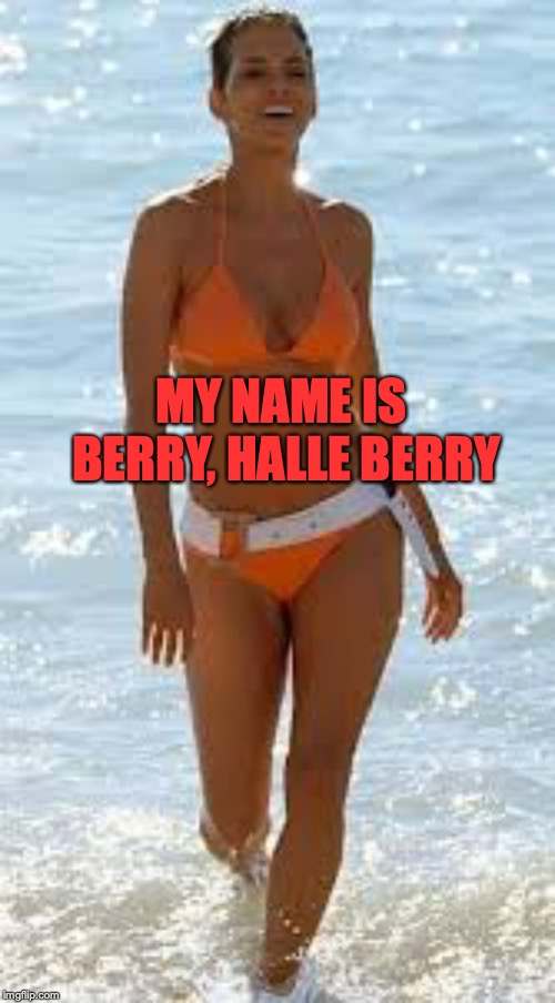 MY NAME IS BERRY, HALLE BERRY | made w/ Imgflip meme maker