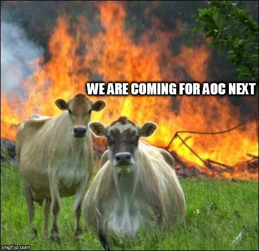 Evil Cows |  WE ARE COMING FOR AOC NEXT | image tagged in memes,evil cows | made w/ Imgflip meme maker