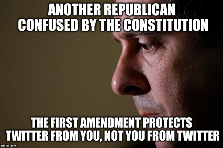 The First Amendment protects free speech from government interference | ANOTHER REPUBLICAN CONFUSED BY THE CONSTITUTION THE FIRST AMENDMENT PROTECTS TWITTER FROM YOU, NOT YOU FROM TWITTER | image tagged in humor,devin nunes,twitter,constituion,first amendment | made w/ Imgflip meme maker