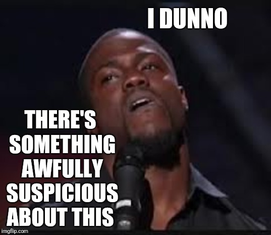 Kevin Hart | I DUNNO THERE'S SOMETHING AWFULLY SUSPICIOUS ABOUT THIS | image tagged in kevin hart | made w/ Imgflip meme maker