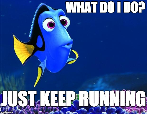 Dory |  WHAT DO I DO? JUST KEEP RUNNING | image tagged in dory | made w/ Imgflip meme maker