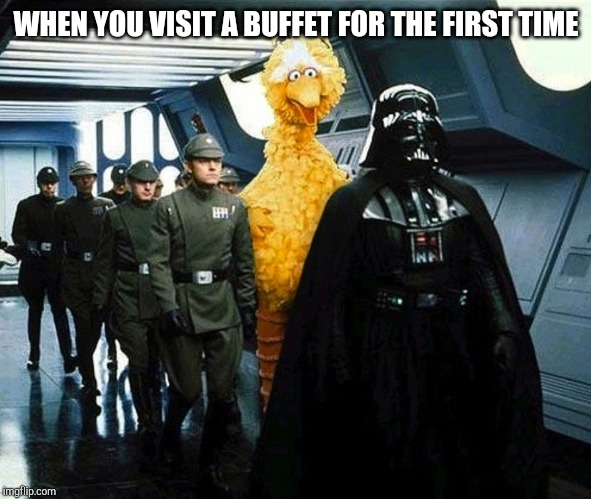 vader big bird | WHEN YOU VISIT A BUFFET FOR THE FIRST TIME | image tagged in vader big bird | made w/ Imgflip meme maker