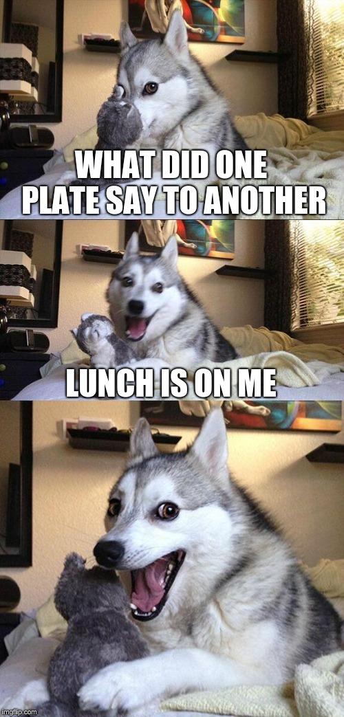 Bad Pun Dog |  WHAT DID ONE PLATE SAY TO ANOTHER; LUNCH IS ON ME | image tagged in memes,bad pun dog | made w/ Imgflip meme maker