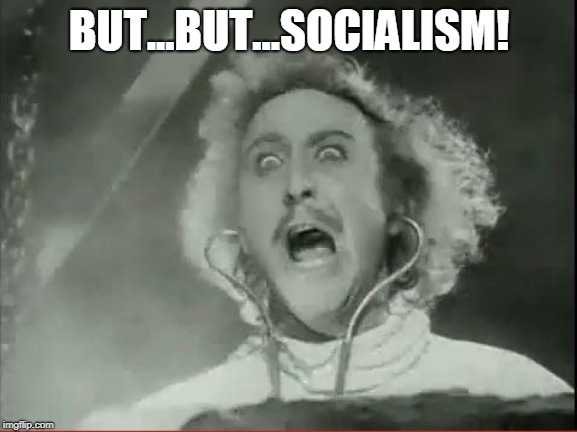 Young Frankenstein | BUT...BUT...SOCIALISM! | image tagged in young frankenstein | made w/ Imgflip meme maker