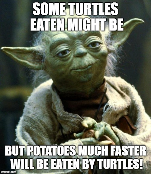 Star Wars Yoda Meme | SOME TURTLES EATEN MIGHT BE BUT POTATOES MUCH FASTER WILL BE EATEN BY TURTLES! | image tagged in memes,star wars yoda | made w/ Imgflip meme maker