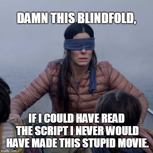 Bird Box | DAMN THIS BLINDFOLD, IF I COULD HAVE READ THE SCRIPT I NEVER WOULD HAVE MADE THIS STUPID MOVIE. | image tagged in memes,bird box | made w/ Imgflip meme maker