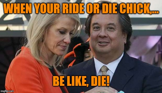 Nice marriage ya got there, it'd be a shame if something were to happen to it. | WHEN YOUR RIDE OR DIE CHICK,... BE LIKE, DIE! | image tagged in sewmyeyesshut,kellyanne conway,george conway,funny memes,trump,ride or die bites | made w/ Imgflip meme maker