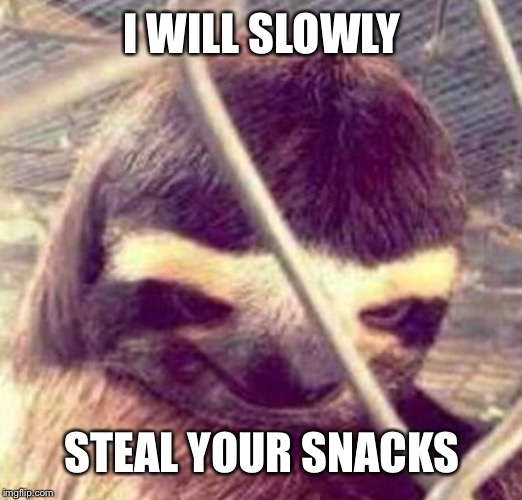 I WILL SLOWLY STEAL YOUR SNACKS | image tagged in sloth | made w/ Imgflip meme maker