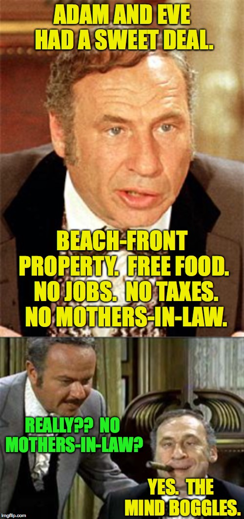 Those Were the Days! | ADAM AND EVE HAD A SWEET DEAL. BEACH-FRONT PROPERTY.  FREE FOOD.  NO JOBS.  NO TAXES.  NO MOTHERS-IN-LAW. REALLY??  NO MOTHERS-IN-LAW? YES.  | image tagged in mel brooks,memes,mother-in-law jokes,rent controlled,adam and eve | made w/ Imgflip meme maker