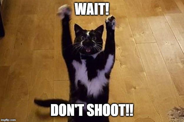 WAIT! DON'T SHOOT!! | made w/ Imgflip meme maker