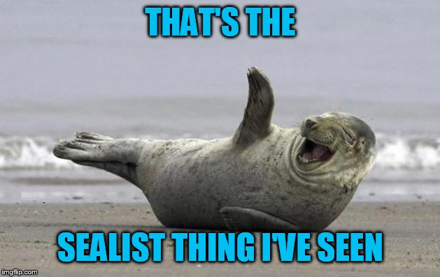 laughing seal | THAT'S THE SEALIST THING I'VE SEEN | image tagged in laughing seal | made w/ Imgflip meme maker