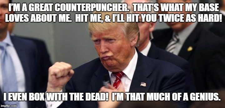 Trump the counterpuncher |  I'M A GREAT COUNTERPUNCHER.  THAT'S WHAT MY BASE LOVES ABOUT ME.  HIT ME, & I'LL HIT YOU TWICE AS HARD! I EVEN BOX WITH THE DEAD!  I'M THAT MUCH OF A GENIUS. | image tagged in donald trump,nevertrump meme,anti-trump,antichrist,donald drumpf,john mccain | made w/ Imgflip meme maker
