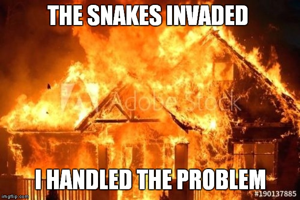 THE SNAKES INVADED I HANDLED THE PROBLEM | made w/ Imgflip meme maker