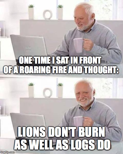 At least he's not lion | ONE TIME I SAT IN FRONT OF A ROARING FIRE AND THOUGHT: LIONS DON'T BURN AS WELL AS LOGS DO | image tagged in memes,hide the pain harold,funny,fire,lions,dark humor | made w/ Imgflip meme maker