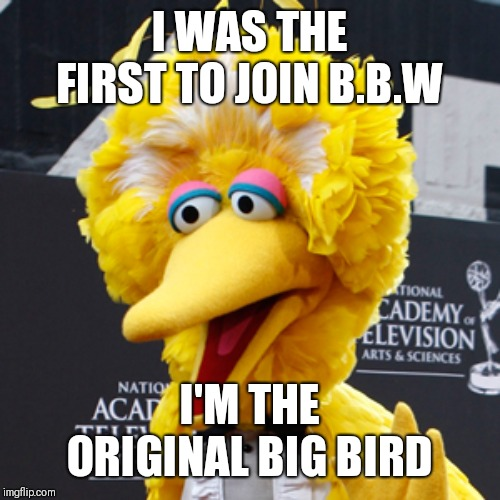 Big Bird |  I WAS THE FIRST TO JOIN B.B.W; I'M THE ORIGINAL BIG BIRD | image tagged in memes,big bird | made w/ Imgflip meme maker