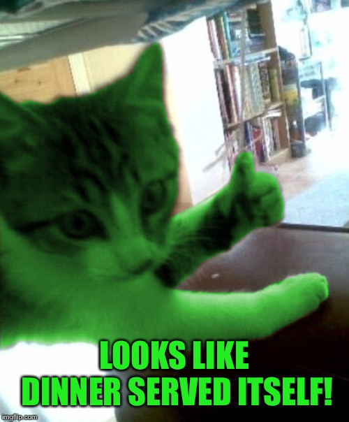 thumbs up RayCat | LOOKS LIKE DINNER SERVED ITSELF! | image tagged in thumbs up raycat | made w/ Imgflip meme maker