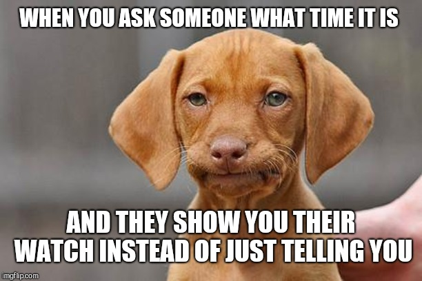 Dissapointed puppy | WHEN YOU ASK SOMEONE WHAT TIME IT IS AND THEY SHOW YOU THEIR WATCH INSTEAD OF JUST TELLING YOU | image tagged in dissapointed puppy | made w/ Imgflip meme maker