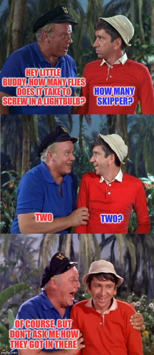 Waiter, there are two flies in my soup! | HEY LITTLE BUDDY, HOW MANY FLIES DOES IT TAKE TO SCREW IN A LIGHTBULB? OF COURSE, BUT DON'T ASK ME HOW THEY GOT IN THERE HOW MANY SKIPPER? T | image tagged in bad pun gilligan,flies,screw in a lightbulb | made w/ Imgflip meme maker