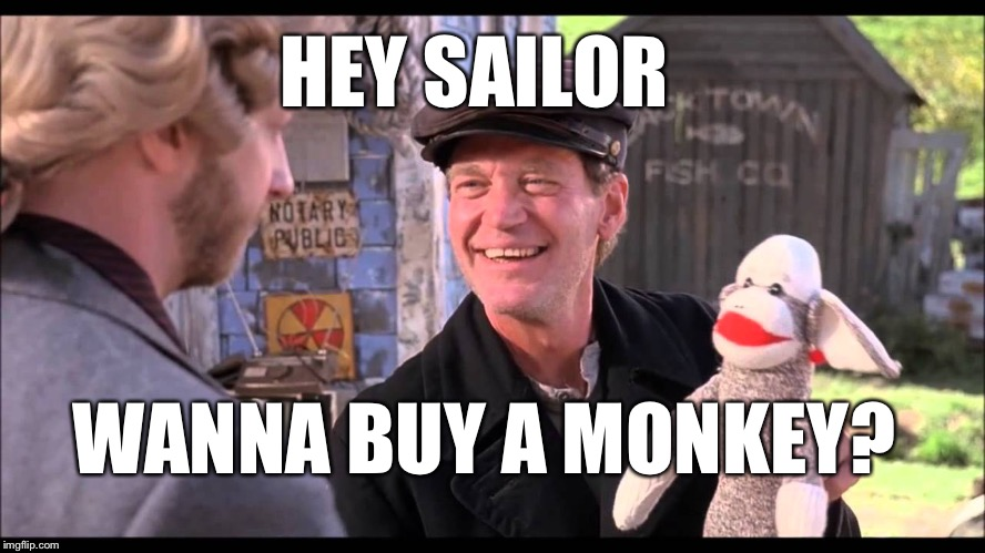 HEY SAILOR WANNA BUY A MONKEY? | image tagged in tubular | made w/ Imgflip meme maker