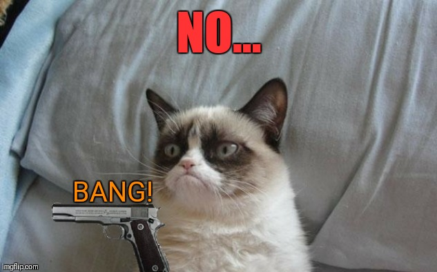 Grumpy cat gun | NO... BANG! | image tagged in grumpy cat gun | made w/ Imgflip meme maker