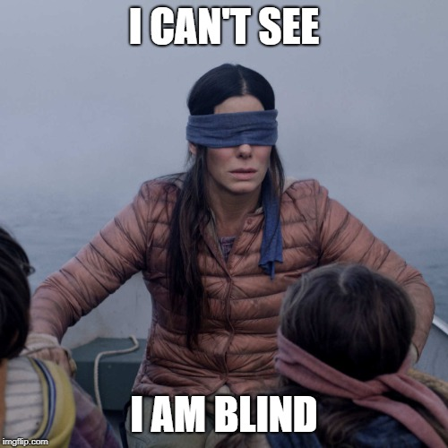 I CAN'T SEE, I AM BLIND | I CAN'T SEE I AM BLIND | image tagged in memes,bird box | made w/ Imgflip meme maker