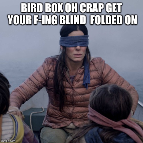 Bird Box | BIRD BOX OH CRAP GET YOUR F-ING BLIND  FOLDED ON | image tagged in memes,bird box | made w/ Imgflip meme maker