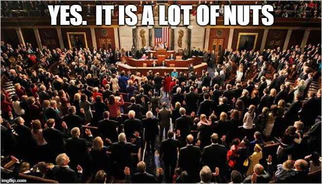 Congress | YES.  IT IS A LOT OF NUTS | image tagged in congress | made w/ Imgflip meme maker