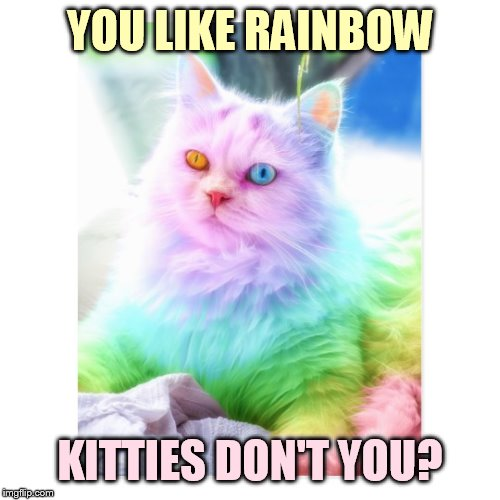 YOU LIKE RAINBOW KITTIES DON'T YOU? | made w/ Imgflip meme maker