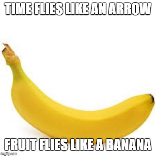 Philosophy fun | TIME FLIES LIKE AN ARROW FRUIT FLIES LIKE A BANANA | image tagged in puns,fruit,archery,time travel,flies | made w/ Imgflip meme maker