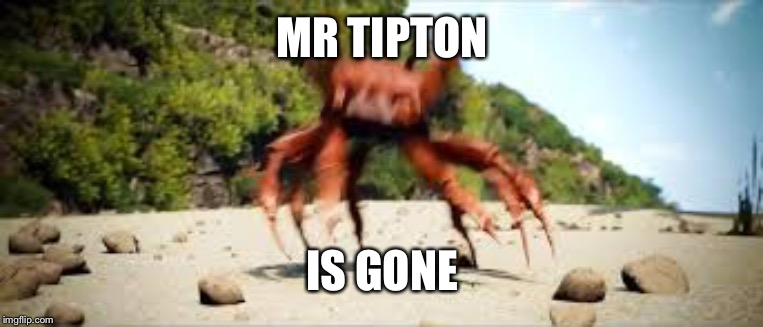 crab rave | MR TIPTON IS GONE | image tagged in crab rave | made w/ Imgflip meme maker