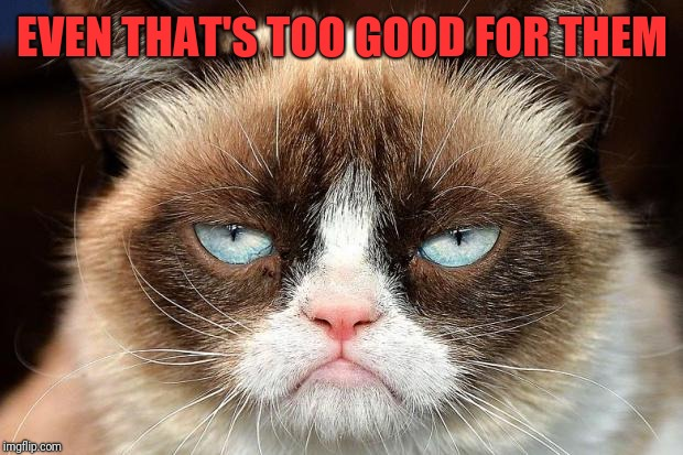 Grumpy Cat Not Amused Meme | EVEN THAT'S TOO GOOD FOR THEM | image tagged in memes,grumpy cat not amused,grumpy cat | made w/ Imgflip meme maker