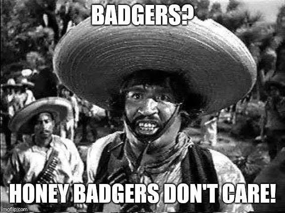 Badges | BADGERS? HONEY BADGERS DON'T CARE! | image tagged in badges | made w/ Imgflip meme maker