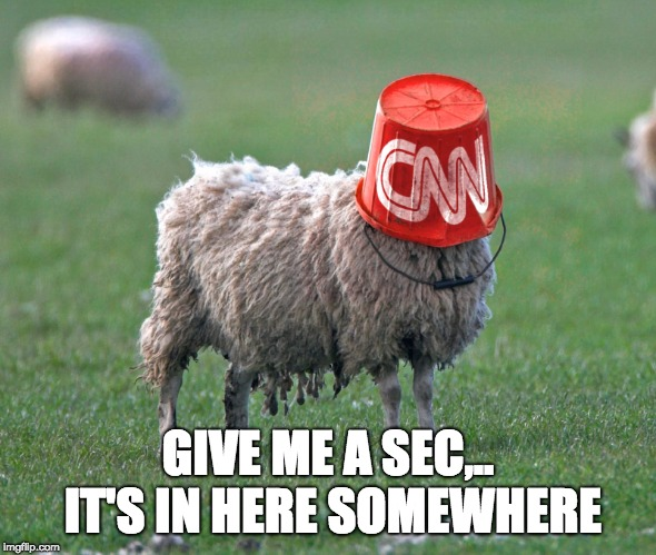 cnn bucket sheep | GIVE ME A SEC,.. IT'S IN HERE SOMEWHERE | image tagged in cnn bucket sheep | made w/ Imgflip meme maker