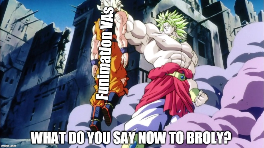 Funimation VAs WHAT DO YOU SAY NOW TO BROLY? | image tagged in broly | made w/ Imgflip meme maker