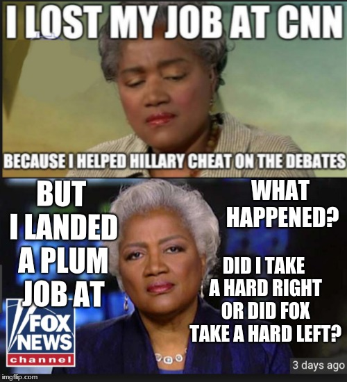BUT I LANDED A PLUM JOB AT DID I TAKE A HARD RIGHT OR DID FOX TAKE A HARD LEFT? WHAT HAPPENED? | image tagged in donna brazile,cnn,fox news | made w/ Imgflip meme maker