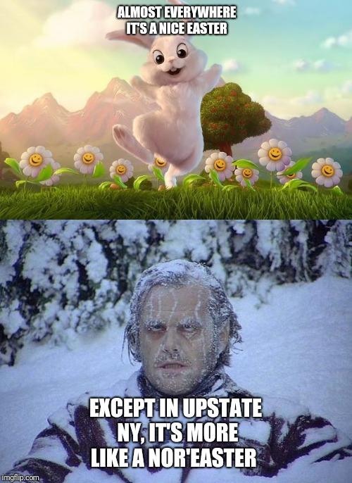 snow bunny meme