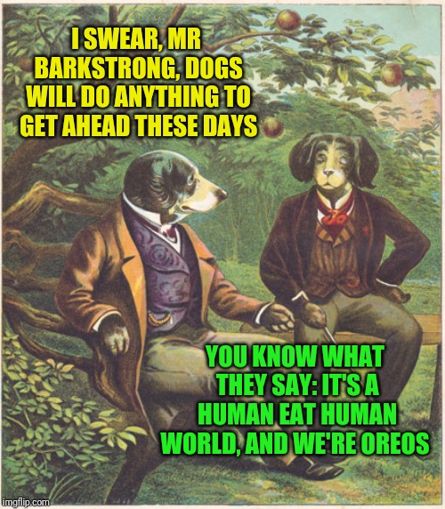 In Another Time, In Another Place  |  I SWEAR, MR BARKSTRONG, DOGS WILL DO ANYTHING TO GET AHEAD THESE DAYS; YOU KNOW WHAT THEY SAY: IT'S A HUMAN EAT HUMAN WORLD, AND WE'RE OREOS | image tagged in dogs talking,memes,dog memes,confused dafuq jack sparrow what,why not both,beautiful vintage flowers | made w/ Imgflip meme maker