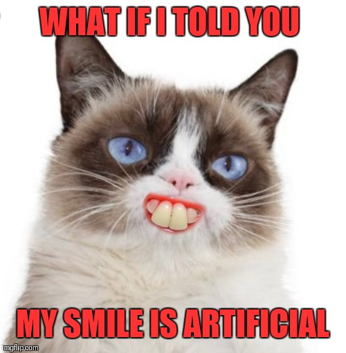 Artificially Happy | WHAT IF I TOLD YOU MY SMILE IS ARTIFICIAL | image tagged in grumpy cat artificially smiles,memes,grumpy cat,funny,smile,grumpy cat smiling | made w/ Imgflip meme maker
