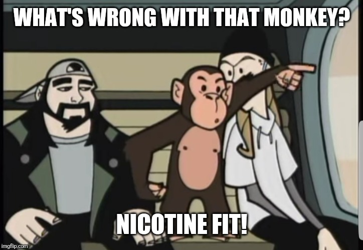 Nicotine fit | WHAT'S WRONG WITH THAT MONKEY? NICOTINE FIT! | image tagged in clerks | made w/ Imgflip meme maker