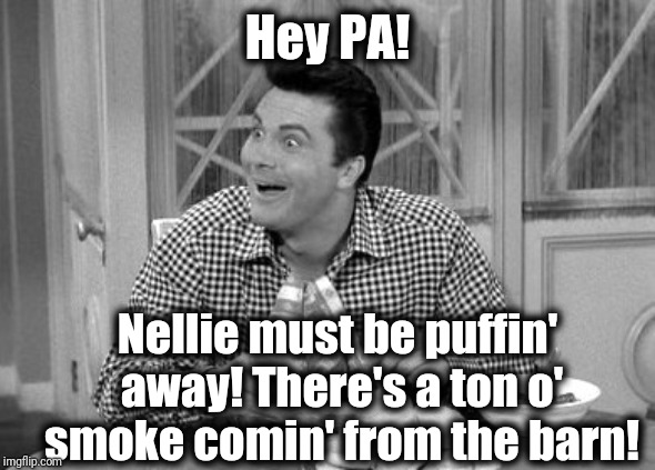 Jethro | Hey PA! Nellie must be puffin' away! There's a ton o' smoke comin' from the barn! | image tagged in jethro | made w/ Imgflip meme maker