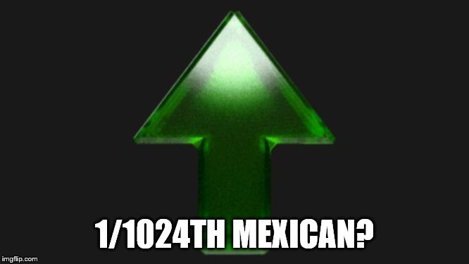 Upvote | 1/1024TH MEXICAN? | image tagged in upvote | made w/ Imgflip meme maker
