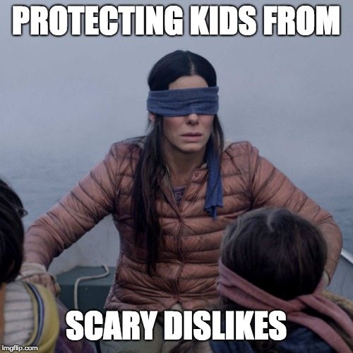 Good Parenting |  PROTECTING KIDS FROM; SCARY DISLIKES | image tagged in memes,bird box,dislike,funny kids | made w/ Imgflip meme maker